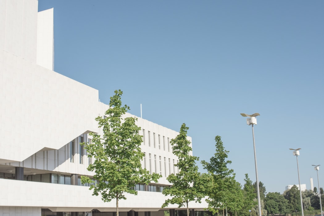 White buildings and trees