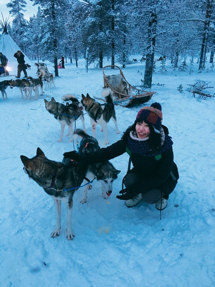 Korean student in Lapland, northern Europe meeting sled dogs.