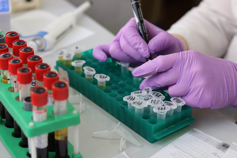 experimenting hands in violet gloves in medical laboratory