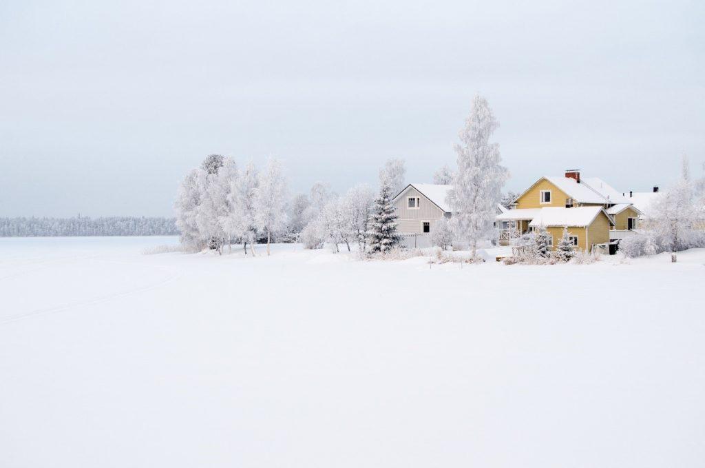 Happy 100th Birthday Finland!