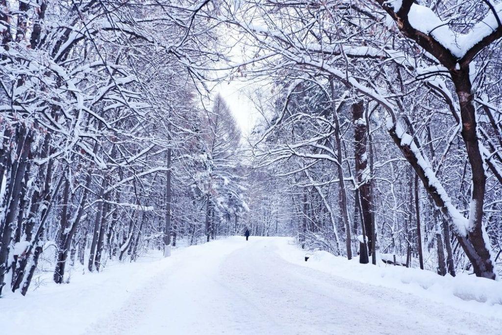 Wintern in Finland snowing