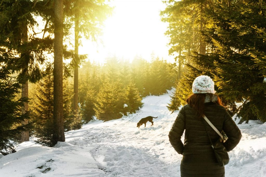 A woman and a dog in the forest during winter